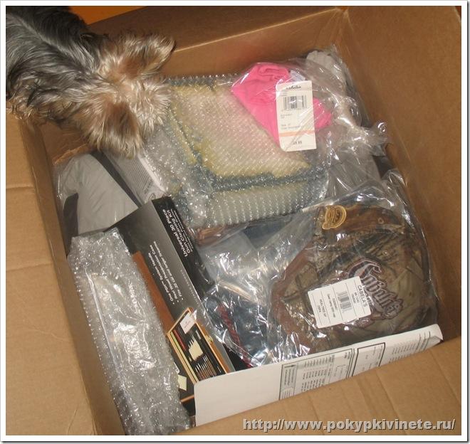 cabelas box посылка